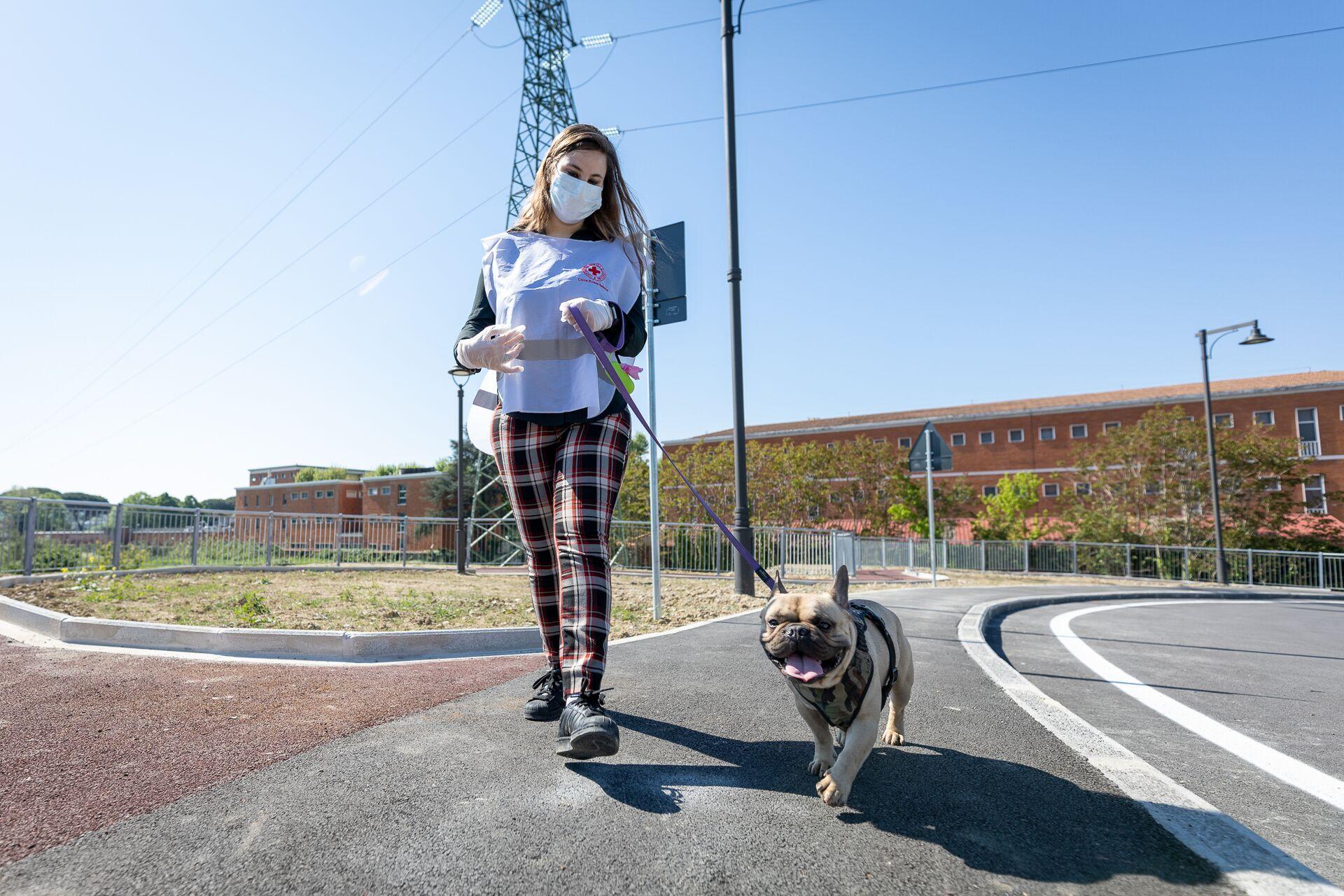 """""""Così con Croce Rossa ci occupiamo dei cani di chi è in isolamento per il virus"""""""